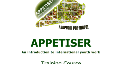 Training Course Appetiser